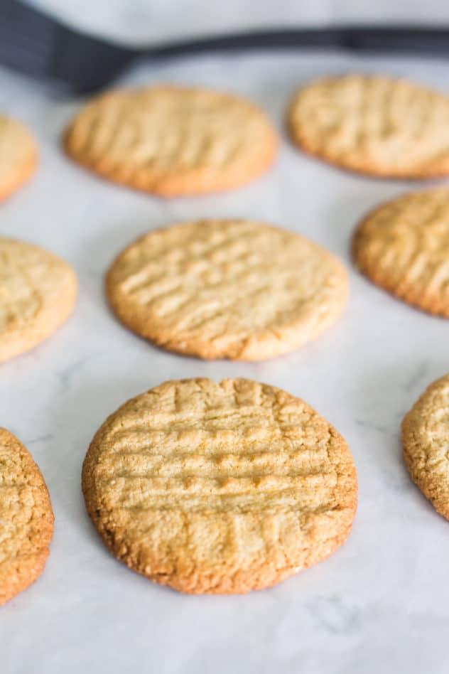 keto peanut butter cookies, keto peanut butter cookie recipe, best keto peanut butter cookies, best keto peanut butter cookie recipe, keto peanut butter cookies almond flour, keto peanut butter cookies easy, low carb peanut butter cookies, low carb peanut butter cookie recipe, low carb peanut butter cookies almond flour, how to make keto peanut butter cookies, sugar free peanut butter cookies, sugar free peanut butter cookies recipe,